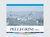pellegrinisrl.it