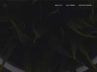 Ecko.me - EckoThemes | Premium Ghost Themes & WordPress Themes