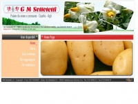 gmsottotetti.it patate cipolle