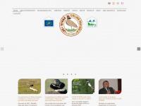 Homepage, Lifetetrax