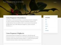 Capitale Italiana dei Giovani | cambia la tua città per sempre