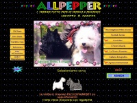 allpepper.it
