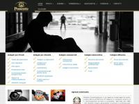 Ponente investigazioni servizi di investigazione
