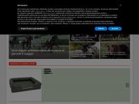 ilportaledelcavallo.it selleria equitazione scuderia
