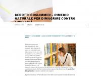 GoSlimmer Cerotti - rimedio naturale per dimagrire contro l'obesità