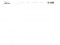 Cuccioli di Barboncino, Cuccioli di Maltese e Cuccioli di Spitz di Pomerania