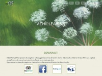 Achillea B&B