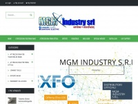 mgm-industry.com