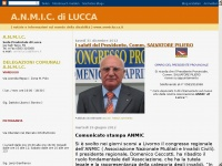anmiclucca.it