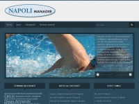napolimanager.it