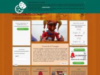 carnevale-viareggio.it