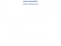 RS Consulting - La giusta soluzione nelle telecomunicazioni e nell'energia elettrica