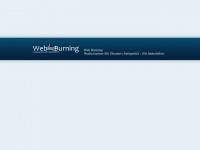 web-burning.com