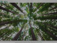 bimasnc.com