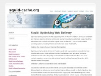 squid-cache.org cache caching