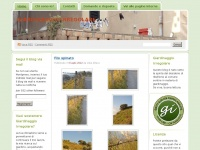 giardinaggioirregolare.com
