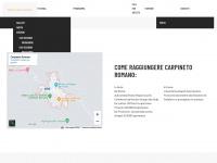 Buskers Festival di Carpineto Romano - Home