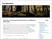 themarketer.info
