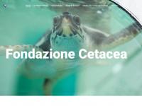 fondazionecetacea.org
