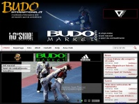 budointernational.it budo mma combattimento