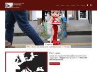 Mercatini antiquariato Veneto a Treviso in Borgo Cavour