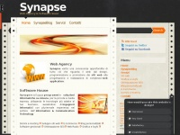 synapseconsulting.org