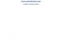 seowebroma.com