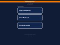 winston.it