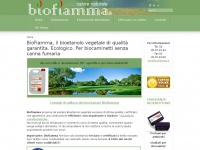 biofiamma.it biocamini biocaminetti canna fumaria
