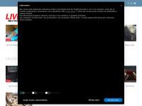 Birdcam, il sito delle webcam sui falchi pellegrini