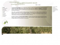 consorzioolioseggiano.it
