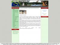 animaliitaliani.com animali qualazampa domestici