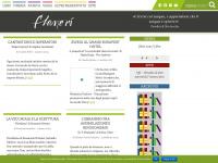 flaneri.com