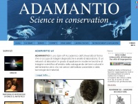 adamantionet.com