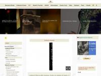 coscienza.org
