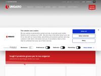 Caldoungaro.it - Ungaro srl Termostufe e caldaie a pellets