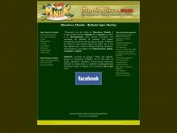 maniladisco.com
