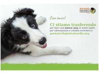 rifugiotrofarello.org