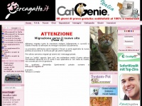 cercagatto.it gatti allevamento gatto