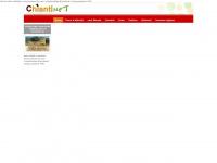 Hotel, Agriturismi, Case Vacanza e Bed & Breakfast nel Chianti, prenotazione online con Chiantinet.it