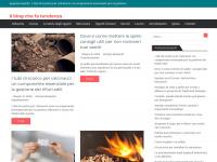 The Shabby Labels - Fashion Blog