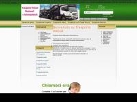 trasportoveicoli.com
