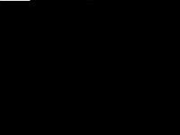 investigazioniserenissima.com