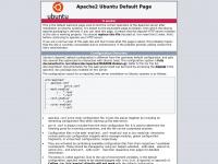 Fluxus IT global consulting