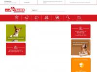 dogbauer.it
