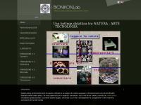 bionikasproni.org