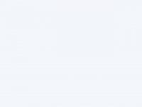 maggi-engineering.com