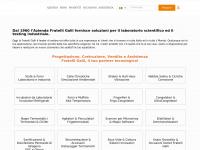 galli2europe.com