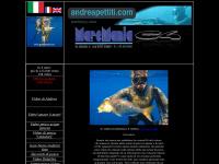 Andrea Pettiti Video