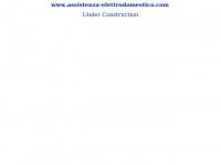assistenza-elettrodomestico.com